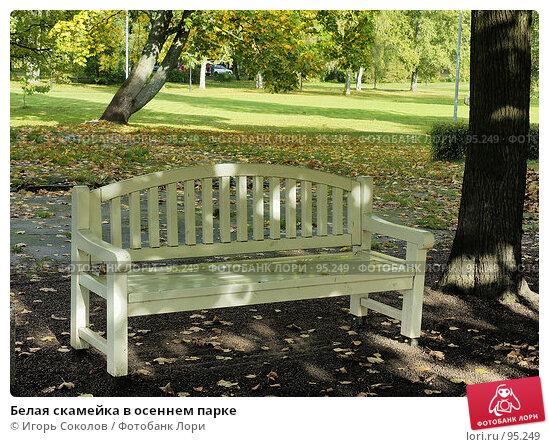 Белая скамейка в осеннем парке, фото № 95249, снято 23 октября 2016 г. (c) Игорь Соколов / Фотобанк Лори
