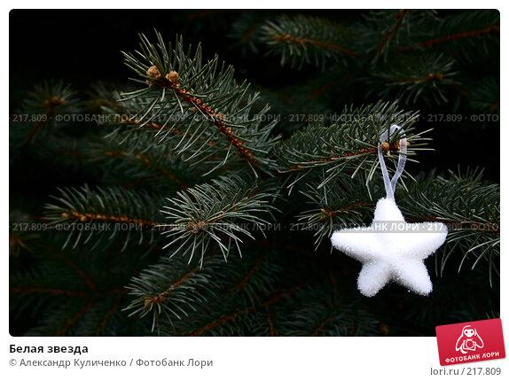 Белая звезда, фото № 217809, снято 23 декабря 2007 г. (c) Александр Куличенко / Фотобанк Лори