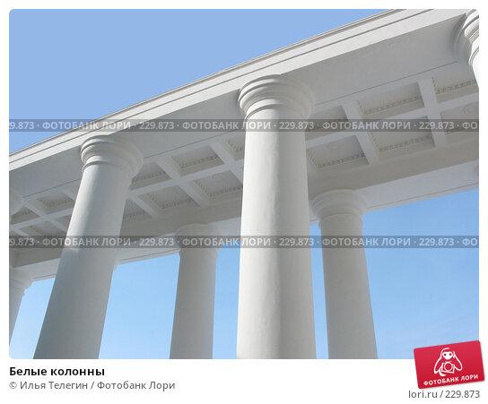 Купить «Белые колонны», фото № 229873, снято 16 марта 2008 г. (c) Илья Телегин / Фотобанк Лори