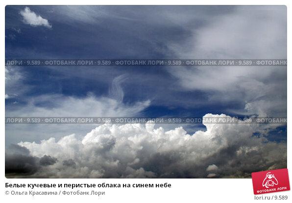 Купить «Белые кучевые и перистые облака на синем небе», фото № 9589, снято 26 июня 2006 г. (c) Ольга Красавина / Фотобанк Лори