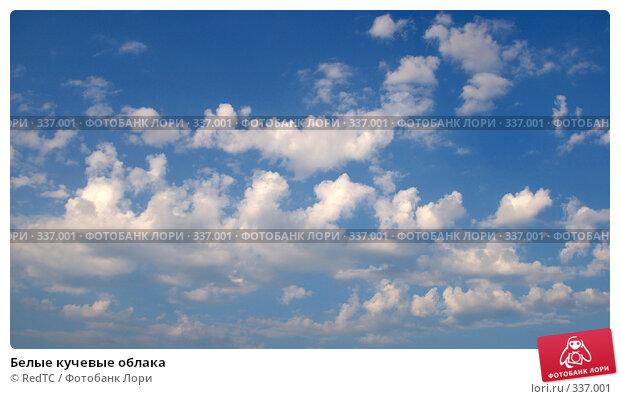 Белые кучевые облака, фото № 337001, снято 25 июня 2008 г. (c) RedTC / Фотобанк Лори