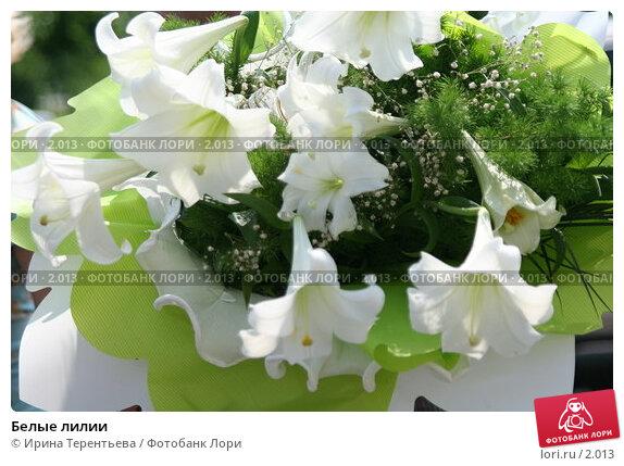 Белые лилии, эксклюзивное фото № 2013, снято 11 июня 2005 г. (c) Ирина Терентьева / Фотобанк Лори