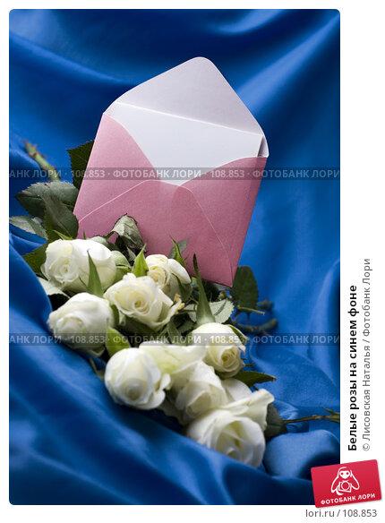 Белые розы на синем фоне, фото № 108853, снято 2 ноября 2007 г. (c) Лисовская Наталья / Фотобанк Лори