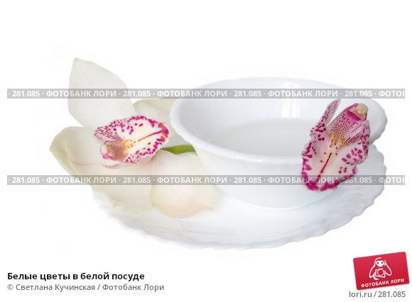 Купить «Белые цветы в белой посуде», фото № 281085, снято 19 апреля 2018 г. (c) Светлана Кучинская / Фотобанк Лори