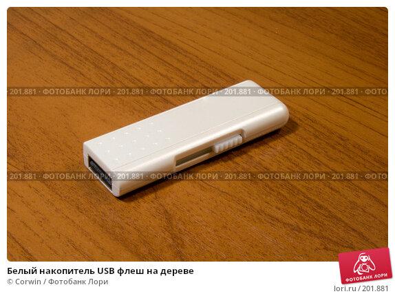 Купить «Белый накопитель USB флеш на дереве», фото № 201881, снято 27 января 2008 г. (c) Corwin / Фотобанк Лори