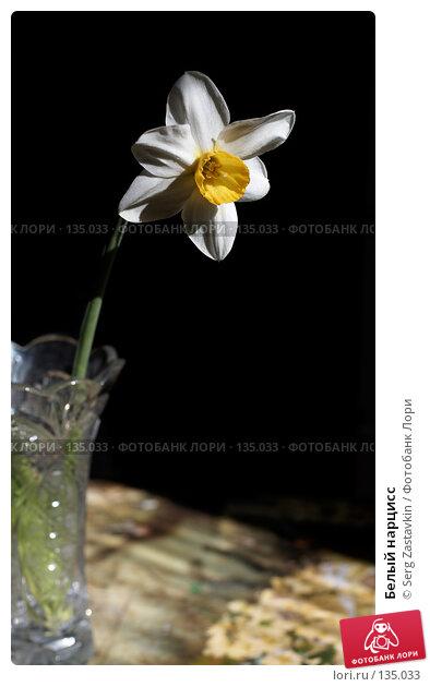 Белый нарцисс, фото № 135033, снято 28 мая 2006 г. (c) Serg Zastavkin / Фотобанк Лори