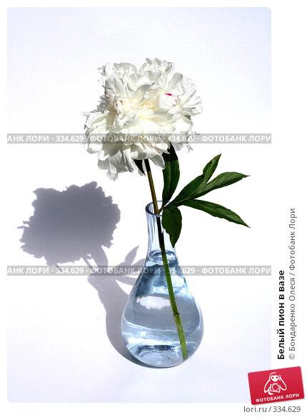 Белый пион в вазе, фото № 334629, снято 25 июня 2008 г. (c) Бондаренко Олеся / Фотобанк Лори