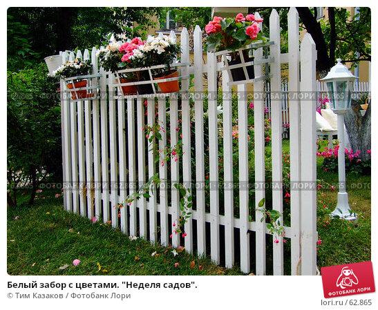 """Белый забор с цветами. """"Неделя садов""""., фото № 62865, снято 17 июля 2007 г. (c) Тим Казаков / Фотобанк Лори"""