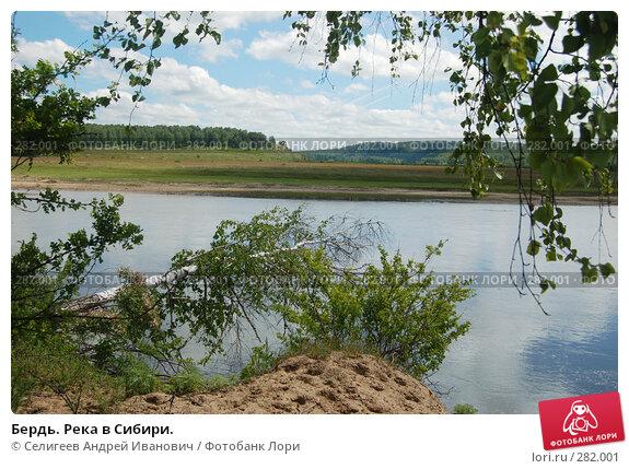 Бердь. Река в Сибири., фото № 282001, снято 10 июня 2007 г. (c) Селигеев Андрей Иванович / Фотобанк Лори