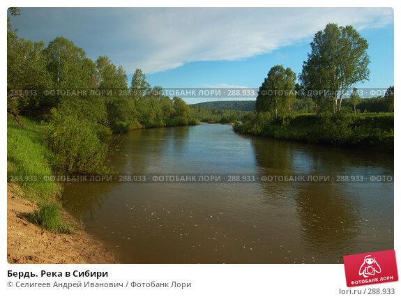 Бердь. Река в Сибири, фото № 288933, снято 11 июня 2007 г. (c) Селигеев Андрей Иванович / Фотобанк Лори