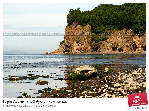 Берег Авачинской бухты. Камчатка., фото № 166853, снято 1 августа 2007 г. (c) Николай Коржов / Фотобанк Лори