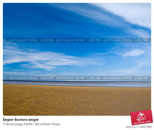 Купить «Берег Белого моря», фото № 1093789, снято 9 августа 2009 г. (c) Александр Fanfo / Фотобанк Лори