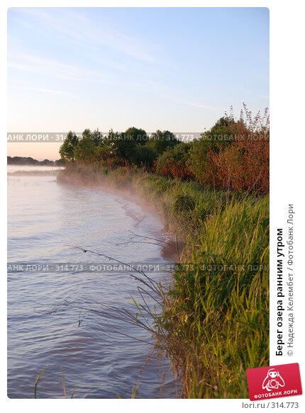 Берег озера ранним утром, фото № 314773, снято 11 июня 2007 г. (c) Надежда Келембет / Фотобанк Лори