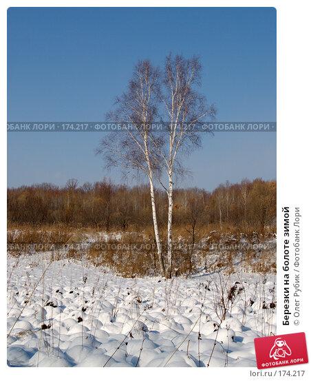 Купить «Березки на болоте зимой», фото № 174217, снято 12 января 2008 г. (c) Олег Рубик / Фотобанк Лори