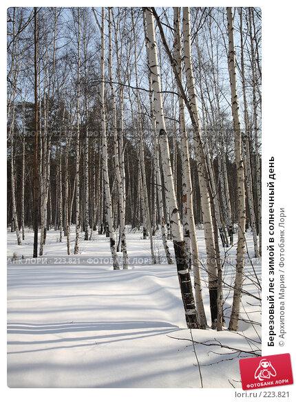 Березовый лес зимой в солнечный день, фото № 223821, снято 10 марта 2008 г. (c) Архипова Мария / Фотобанк Лори
