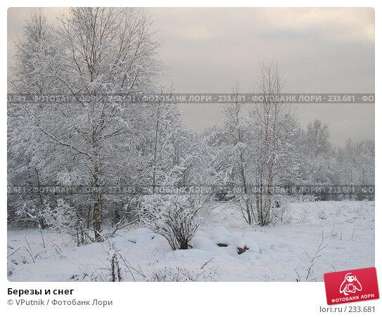 Купить «Березы и снег», фото № 233681, снято 22 апреля 2018 г. (c) VPutnik / Фотобанк Лори