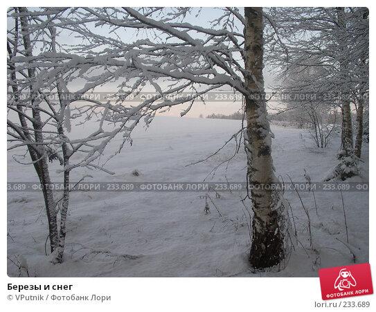 Березы и снег, фото № 233689, снято 30 марта 2017 г. (c) VPutnik / Фотобанк Лори
