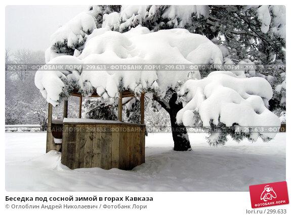 Беседка под сосной зимой в горах Кавказа, фото № 299633, снято 27 октября 2016 г. (c) Оглоблин Андрей Николаевич / Фотобанк Лори