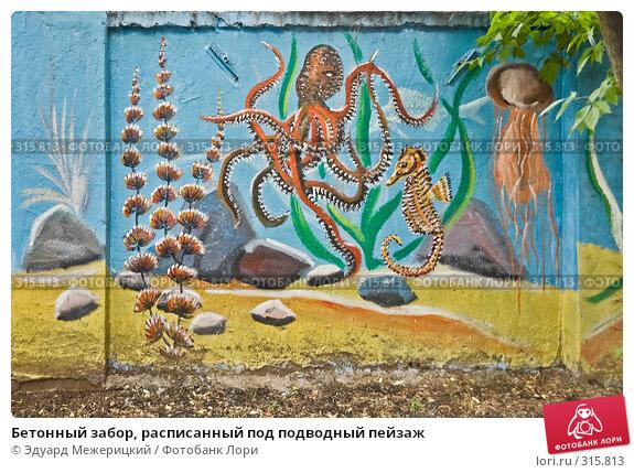 Бетонный забор, расписанный под подводный пейзаж, фото № 315813, снято 7 июня 2008 г. (c) Эдуард Межерицкий / Фотобанк Лори