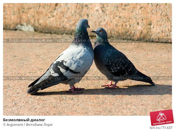 Безмолвный диалог, фото № 71637, снято 28 сентября 2006 г. (c) Argument / Фотобанк Лори