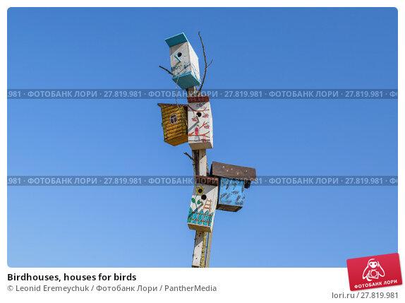 Купить «Birdhouses, houses for birds», фото № 27819981, снято 24 февраля 2018 г. (c) PantherMedia / Фотобанк Лори