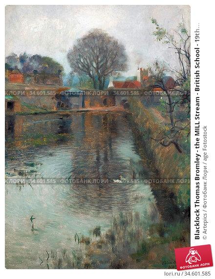 Blacklock Thomas Bromley - the MILL Stream - British School - 19th... Стоковое фото, фотограф Artepics / age Fotostock / Фотобанк Лори