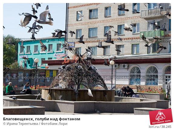 Купить «Благовещенск, голуби над фонтаном», эксклюзивное фото № 38245, снято 23 сентября 2005 г. (c) Ирина Терентьева / Фотобанк Лори