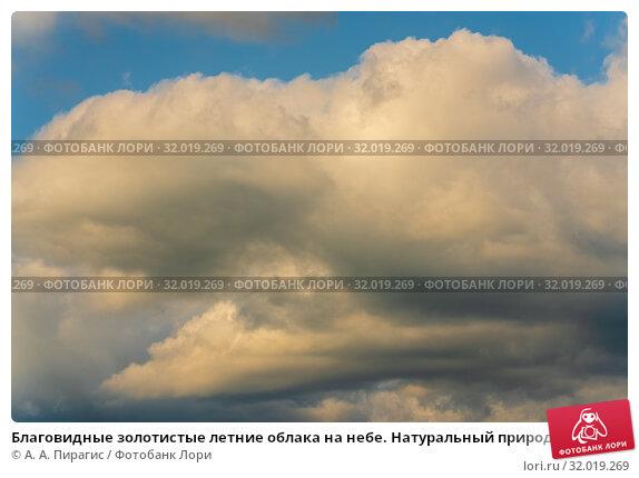 Купить «Благовидные золотистые летние облака на небе. Натуральный природный фон, мягкий фокус», фото № 32019269, снято 12 августа 2019 г. (c) А. А. Пирагис / Фотобанк Лори