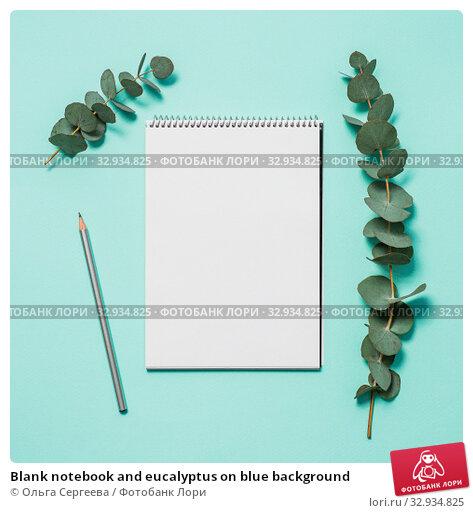 Купить «Blank notebook and eucalyptus on blue background», фото № 32934825, снято 1 июля 2019 г. (c) Ольга Сергеева / Фотобанк Лори