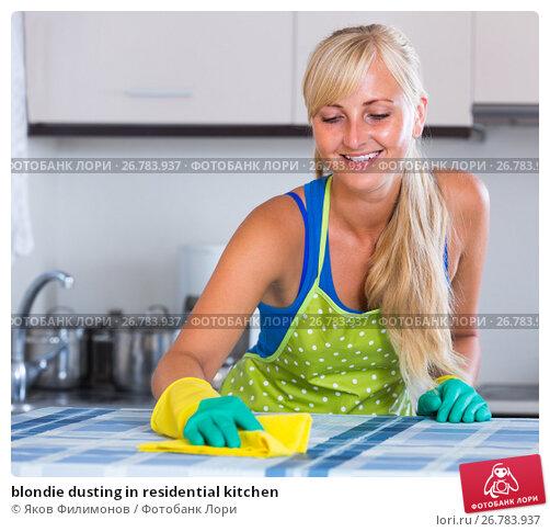blondie dusting in residential kitchen, фото № 26783937, снято 24 сентября 2017 г. (c) Яков Филимонов / Фотобанк Лори
