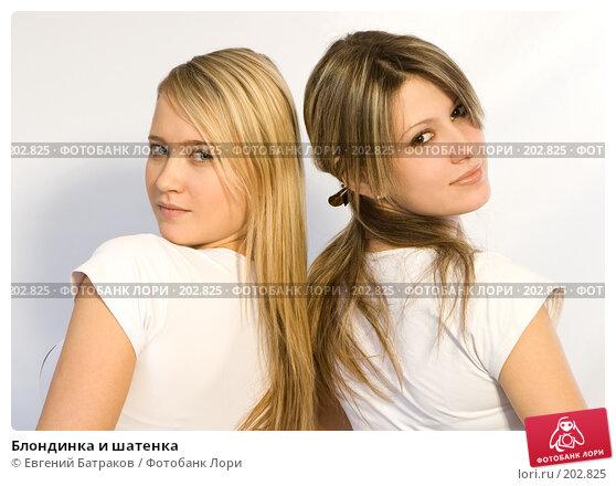 Блондинка и шатенка, фото № 202825, снято 25 ноября 2007 г. (c) Евгений Батраков / Фотобанк Лори