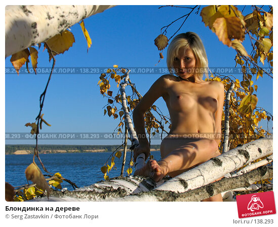 Блондинка на дереве, фото № 138293, снято 18 сентября 2005 г. (c) Serg Zastavkin / Фотобанк Лори