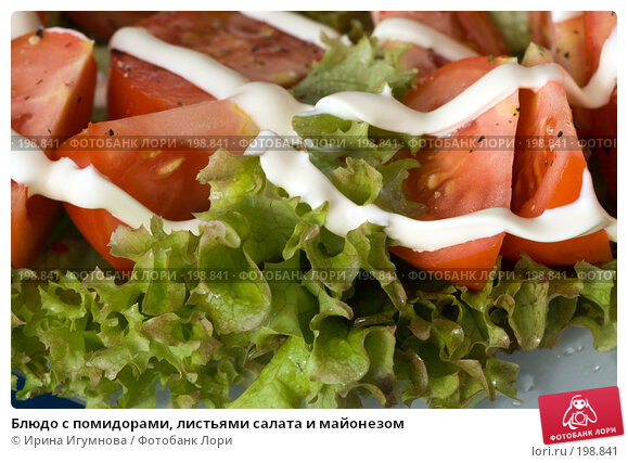 Блюдо с помидорами, листьями салата и майонезом, фото № 198841, снято 12 августа 2007 г. (c) Ирина Игумнова / Фотобанк Лори