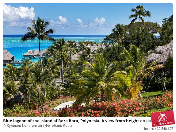 Купить «Blue lagoon of the island of Bora Bora, Polynesia. A view from height on palm trees, traditional lodges over water and the sea», фото № 29540697, снято 18 июня 2011 г. (c) Куликов Константин / Фотобанк Лори