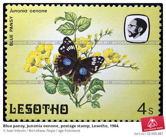 Blue pansy, Junonia oenone, postage stamp, Lesotho, 1984. (2014 год). Редакционное фото, фотограф Ivan Vdovin / age Fotostock / Фотобанк Лори