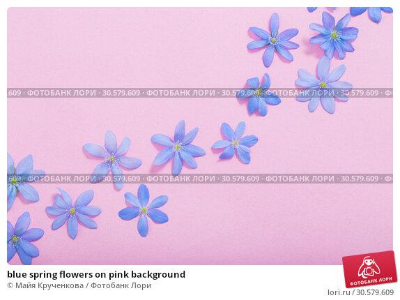 Купить «blue spring flowers on pink background», фото № 30579609, снято 13 апреля 2019 г. (c) Майя Крученкова / Фотобанк Лори