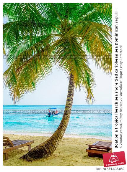 Boat on a tropical beach sea shore tied caribbean sea Dominican republic... Стоковое фото, фотограф Zoonar.com/Dmitriy Bruskov / easy Fotostock / Фотобанк Лори
