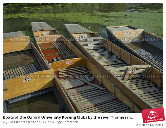 Boats of the Oxford University Rowing Clubs by the river Thames in... Стоковое фото, фотограф Julio Etchart / age Fotostock / Фотобанк Лори
