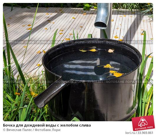 Купить «Бочка для дождевой воды с желобом слива», фото № 33969861, снято 5 сентября 2019 г. (c) Вячеслав Палес / Фотобанк Лори