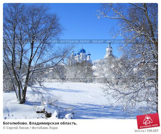 Купить «Боголюбово. Владимирская область.», фото № 109697, снято 16 февраля 2007 г. (c) Сергей Лисов / Фотобанк Лори