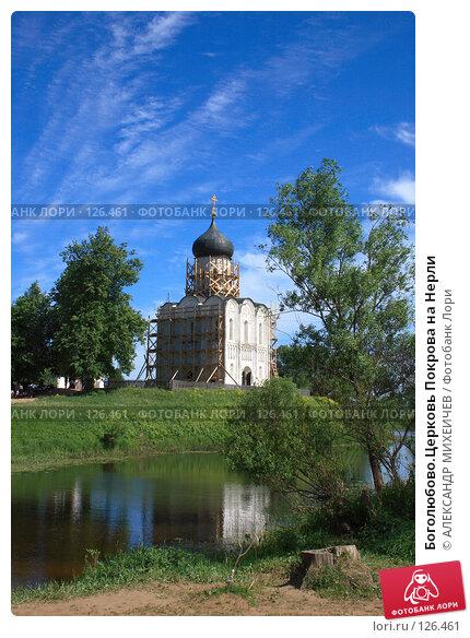 Боголюбово.Церковь Покрова на Нерли, фото № 126461, снято 2 июня 2007 г. (c) АЛЕКСАНДР МИХЕИЧЕВ / Фотобанк Лори