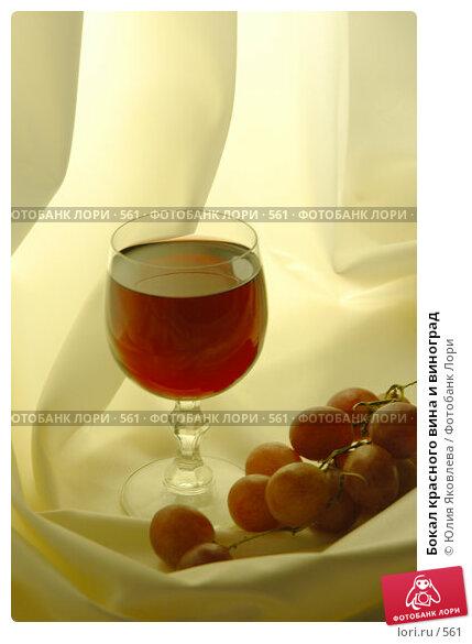 Купить «Бокал красного вина и виноград», фото № 561, снято 14 февраля 2005 г. (c) Юлия Яковлева / Фотобанк Лори