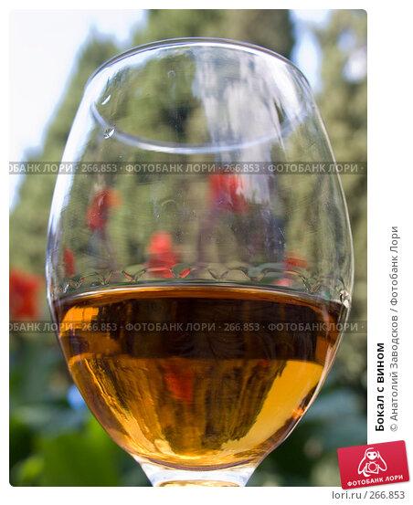 Бокал с вином, фото № 266853, снято 13 сентября 2006 г. (c) Анатолий Заводсков / Фотобанк Лори