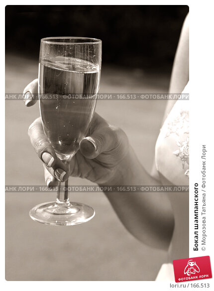 Бокал шампанского, фото № 166513, снято 22 сентября 2006 г. (c) Морозова Татьяна / Фотобанк Лори