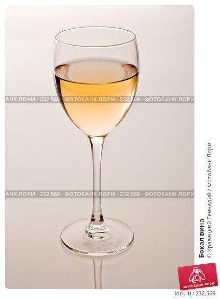 Купить «Бокал вина», фото № 232569, снято 16 октября 2005 г. (c) Кравецкий Геннадий / Фотобанк Лори