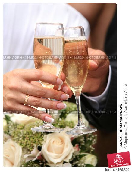 Бокалы шампанского, фото № 166529, снято 25 августа 2007 г. (c) Морозова Татьяна / Фотобанк Лори