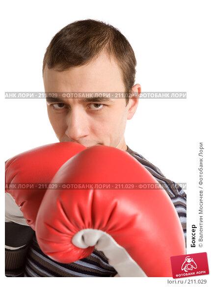 Боксер, фото № 211029, снято 24 февраля 2008 г. (c) Валентин Мосичев / Фотобанк Лори