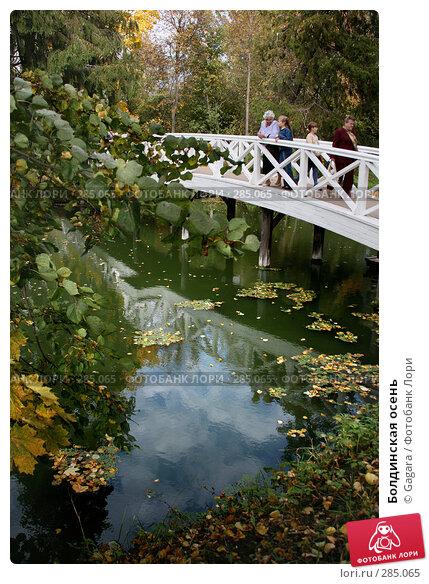 Болдинская осень, эксклюзивное фото № 285065, снято 28 сентября 2007 г. (c) Gagara / Фотобанк Лори