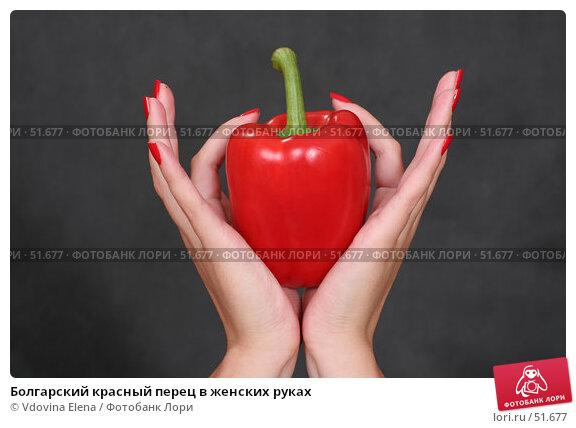 Болгарский красный перец в женских руках, фото № 51677, снято 5 июня 2007 г. (c) Vdovina Elena / Фотобанк Лори