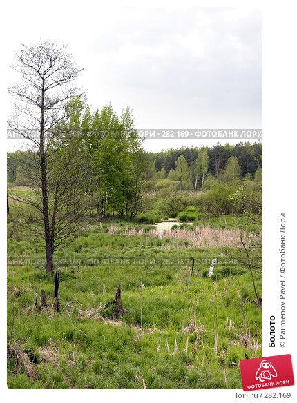 Купить «Болото», фото № 282169, снято 10 мая 2008 г. (c) Parmenov Pavel / Фотобанк Лори